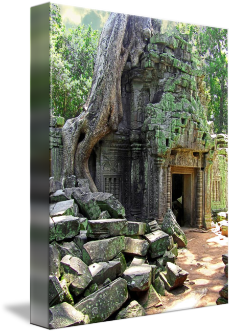 Ruins drawing overgrown. Te prohm temple by