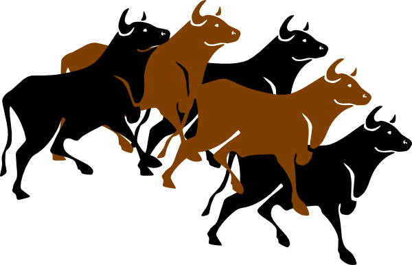Running bull png. Stampede clip art at