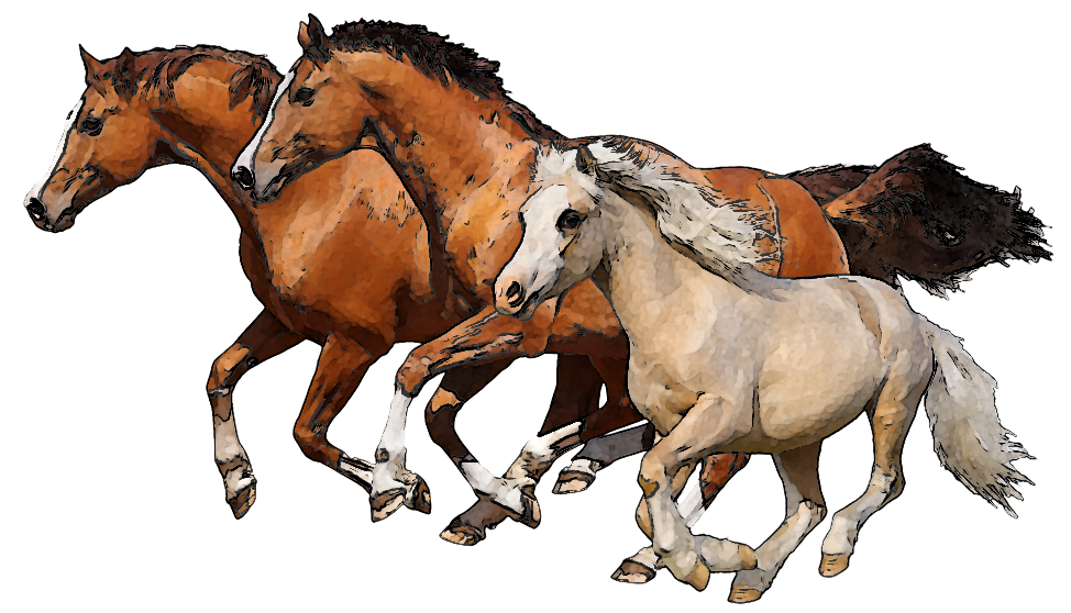Running horse png. Horses transparent clipart image