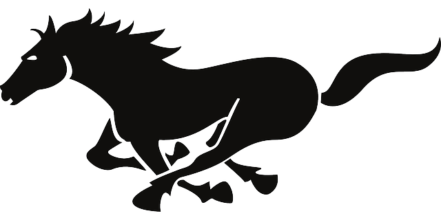 Running horse silhouette png. Horses at getdrawings com