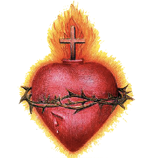 Sacred heart png. For half a century
