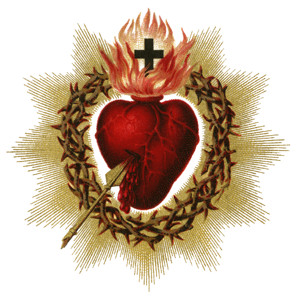 Sacred heart png. Pictures file x