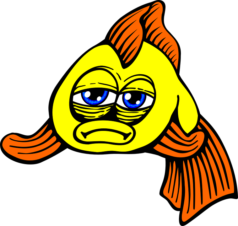 Sad fish png. Image