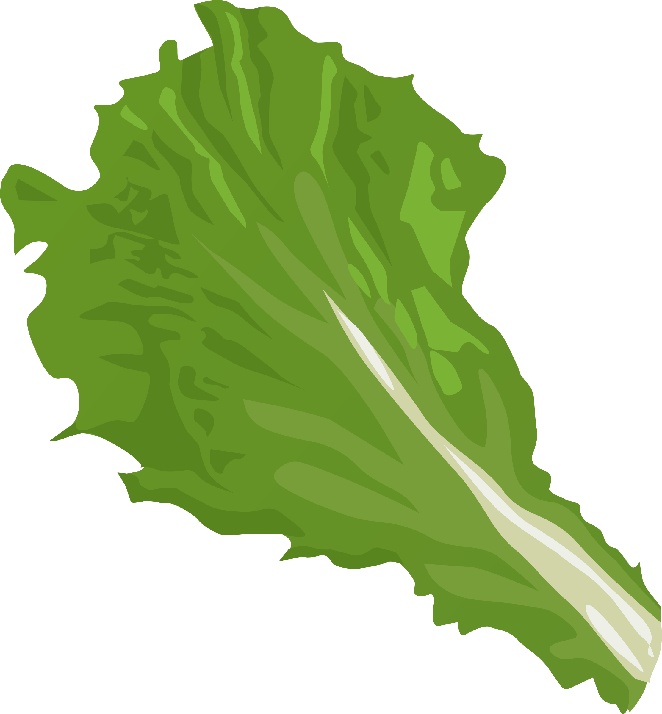Salad clipart animated. Lettuce at getdrawings com