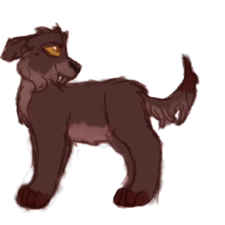 Sales drawing dog. Arche pup adoptable by