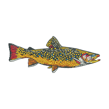 Salmon clipart brook trout. Production ready artwork for