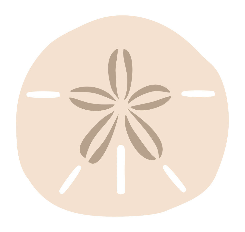 Sand dollar png. Silhouette at getdrawings com