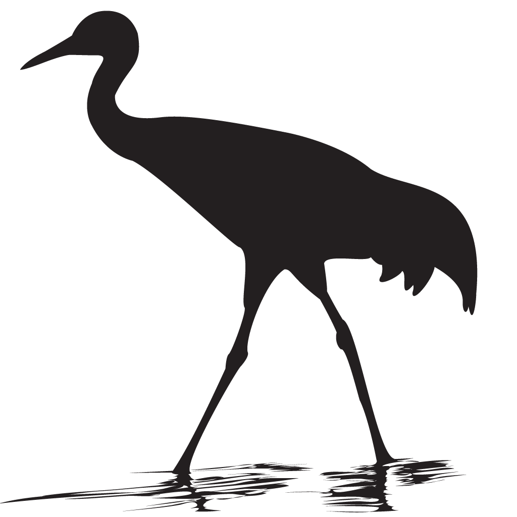 Sand hill png. Sandhill crane overview all