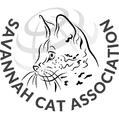 Savannah drawing cat. History the eighteen founders