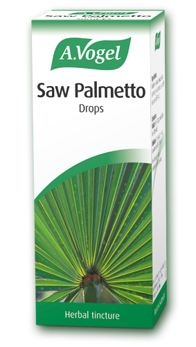 Saw palmetto png. From a vogel extract