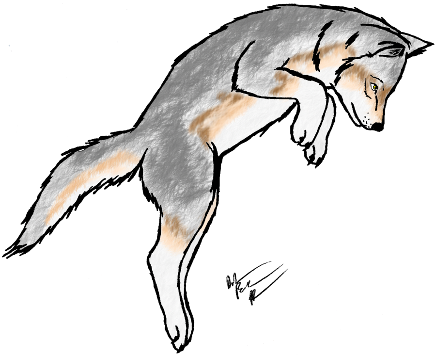 Scared clipart fox. Wolf pup adoptable open