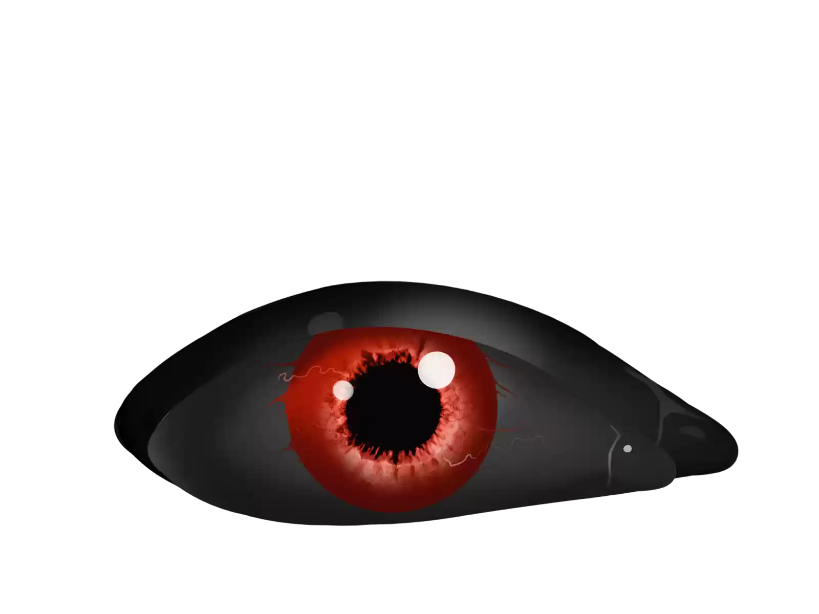 Scary eyes png. Editor azhar