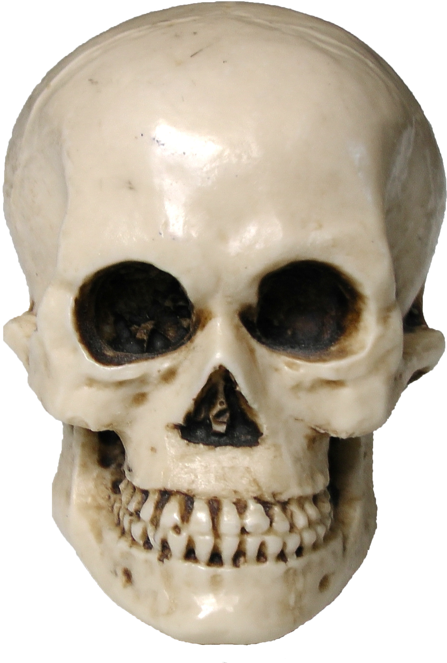 Scary face png. Free halloween skull image
