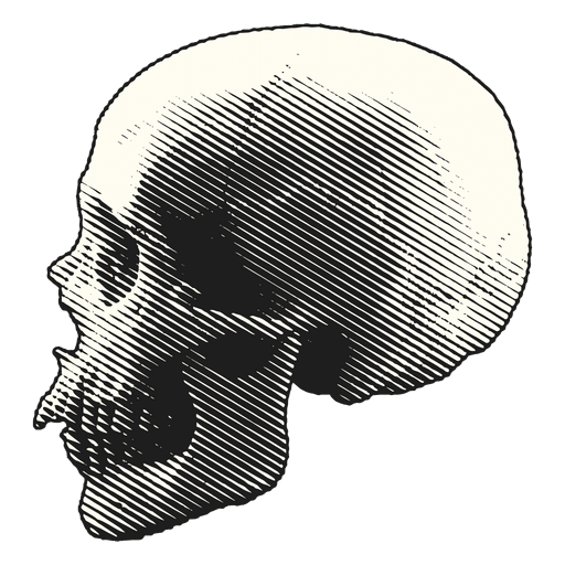 Scary png. Halloween illustration skull transparent