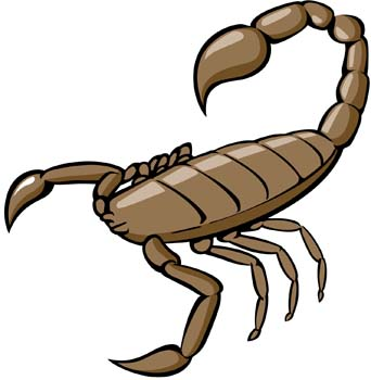 Panda free images scorpionclipart. Scorpion clipart library