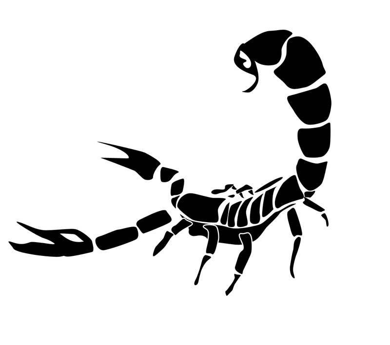 Scorpion clipart easy. Download simple tattoo on