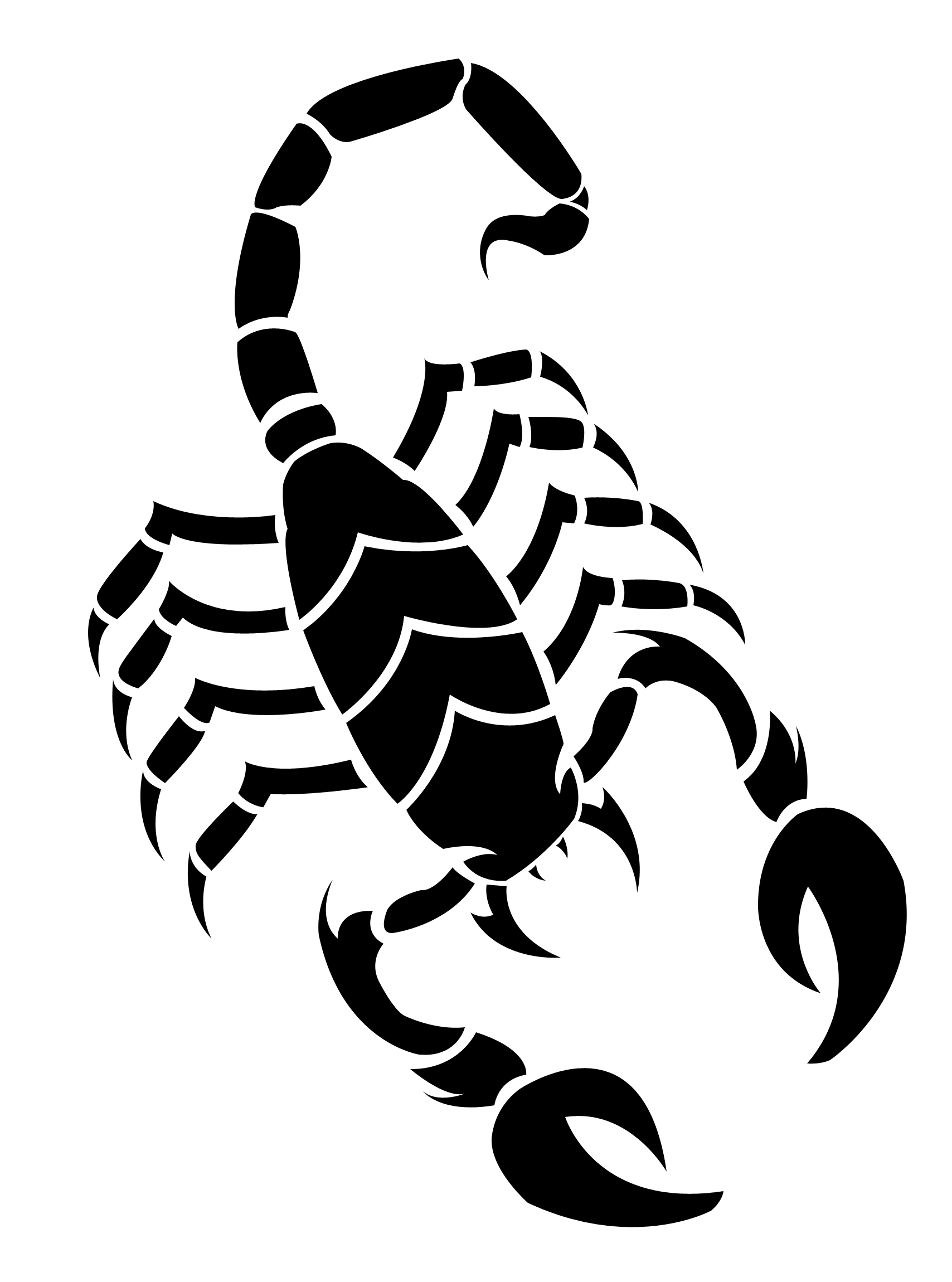 Scorpion clipart easy. How to draw scorpions
