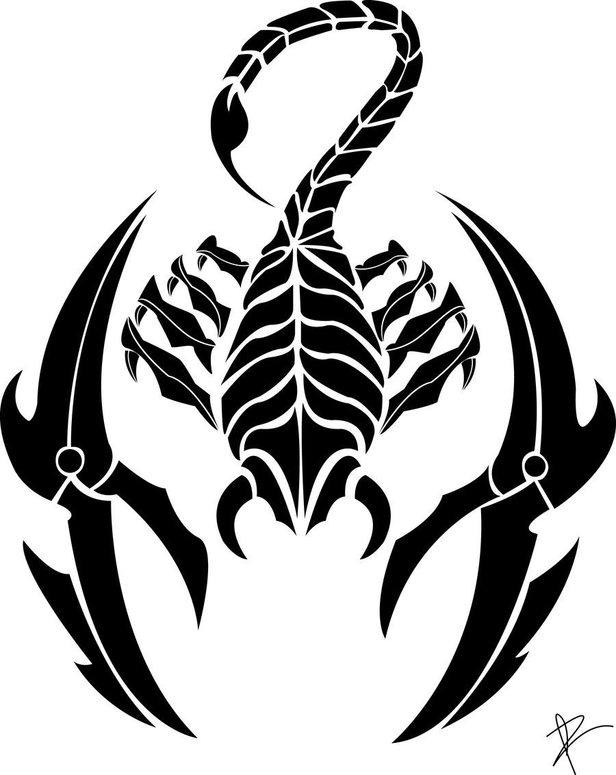 Scorpion clipart scorpio zodiac. Tattoo s for tribal