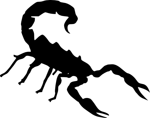 Drawing scorpion diagram