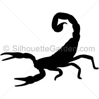Scorpion clipart scorpio zodiac. Pin by muse printables
