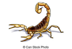 Clip art and stock. Scorpion clipart vector transparent stock