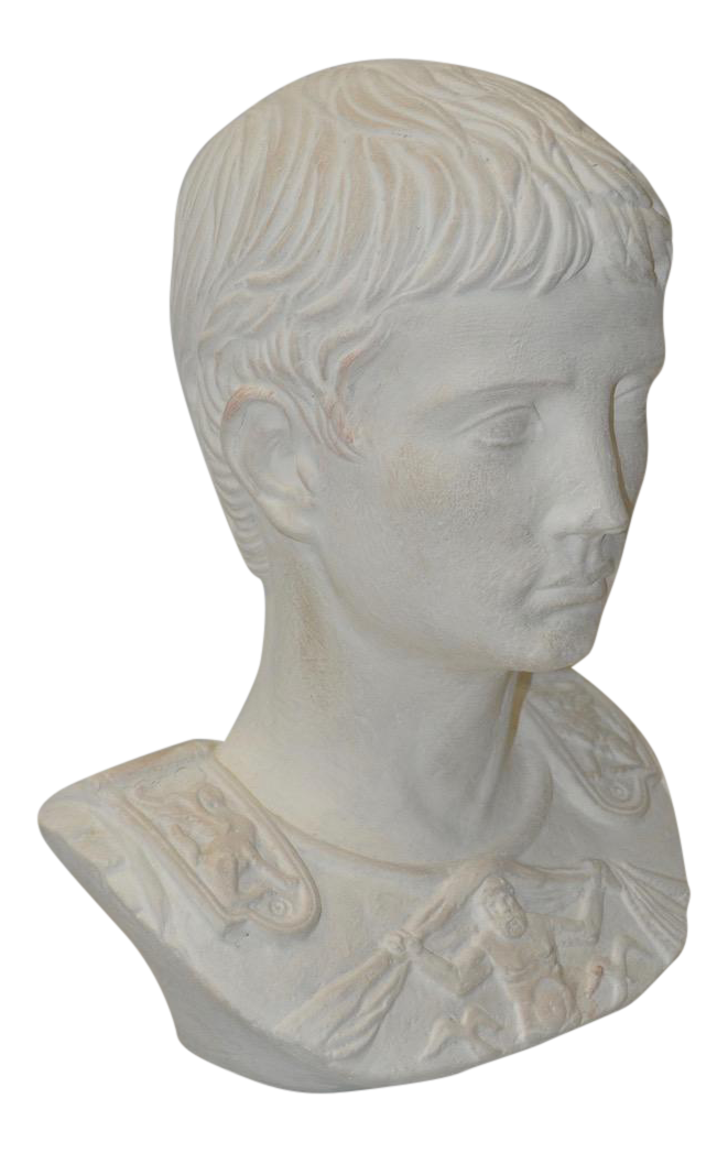 Sculptural drawing composite. Bust of a handsome