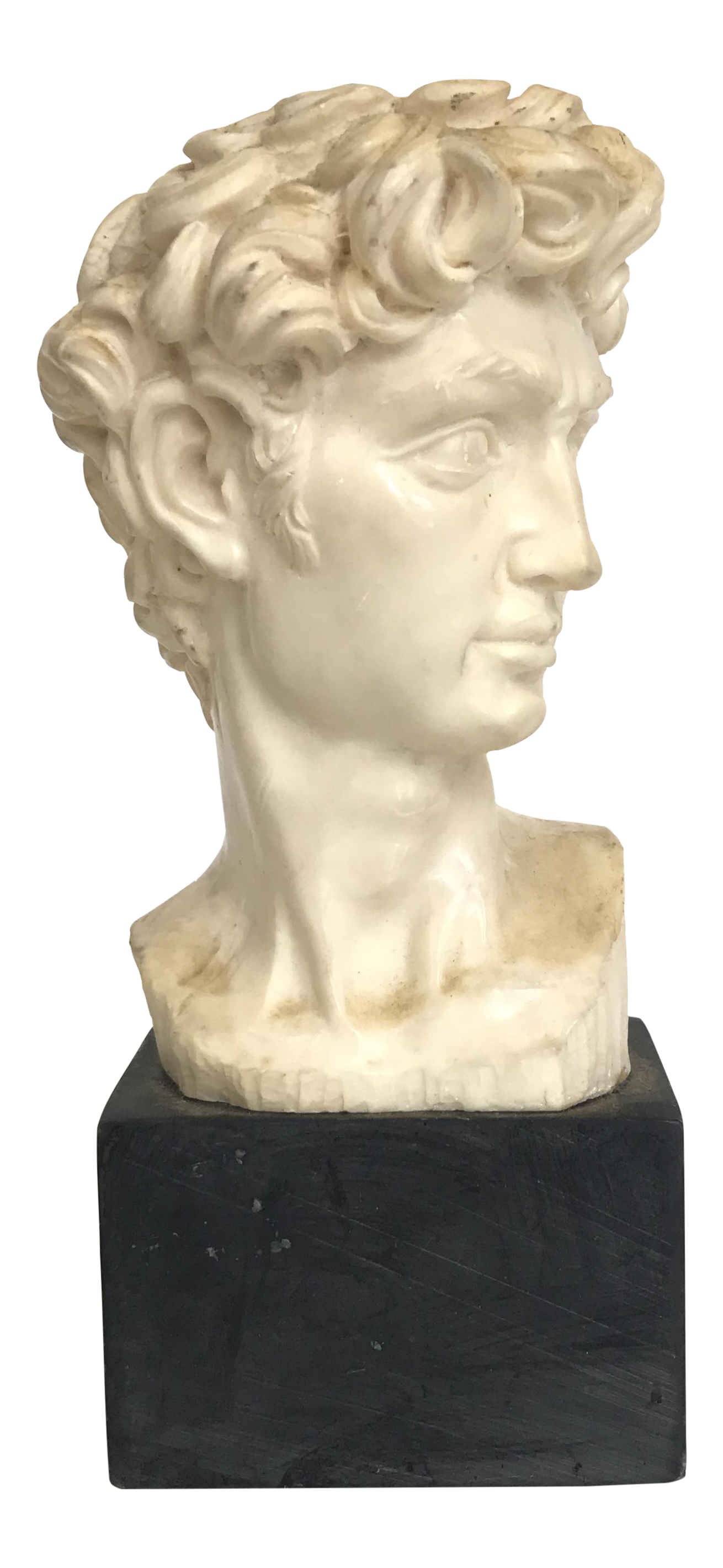 Sculptural drawing david statue face. Michelangelo head of a