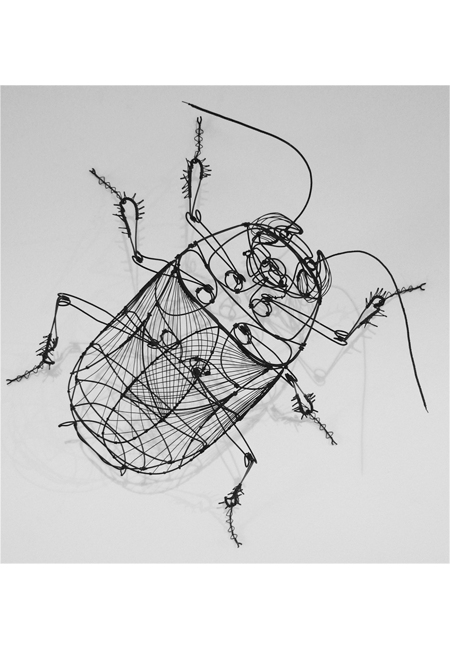 Sculptural drawing wire. Could also use colored