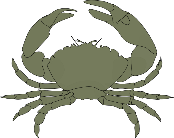 Scuttle crab png. Green clip art at