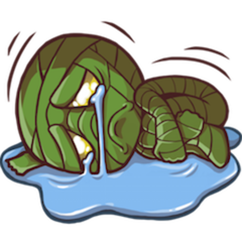 Scuttle crab png. Jungle icons invade the