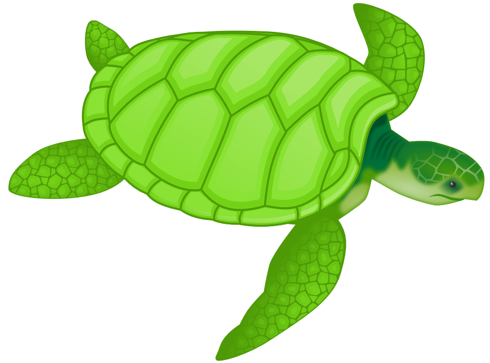 Sea turtle clipart png. Onlinelabels clip art green