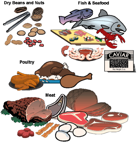 Seafood clipart fish protein. Nutrition myplate flashcards quizlet