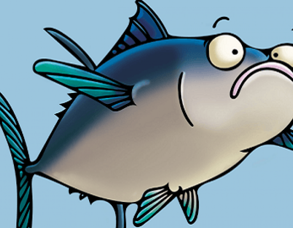 Seafood clipart fish protein. Of the month tuna