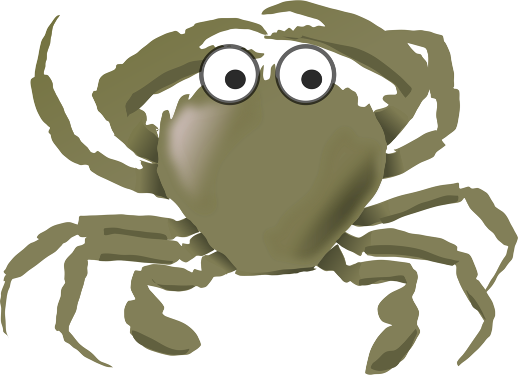 Squid clipart cartoon angry. The crab seafood aquatic
