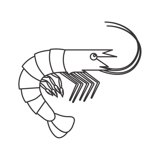 Seafood drawing japanese. Lobster icon icons by