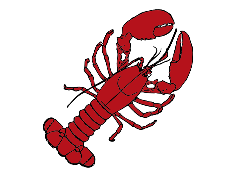 Seafood drawing lobster maine. Roll clip art picture