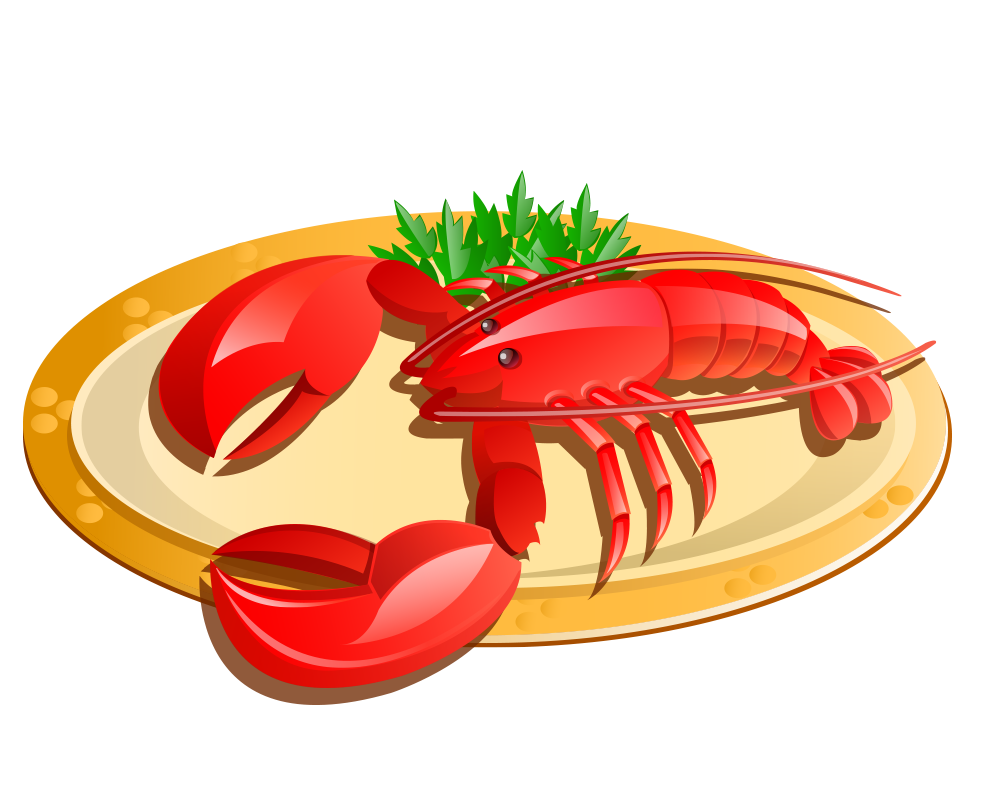 Seafood drawing lobster maine. Graphic royalty free
