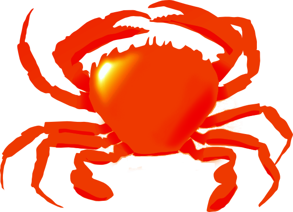 Seafood drawing red crab. Graphic royalty free