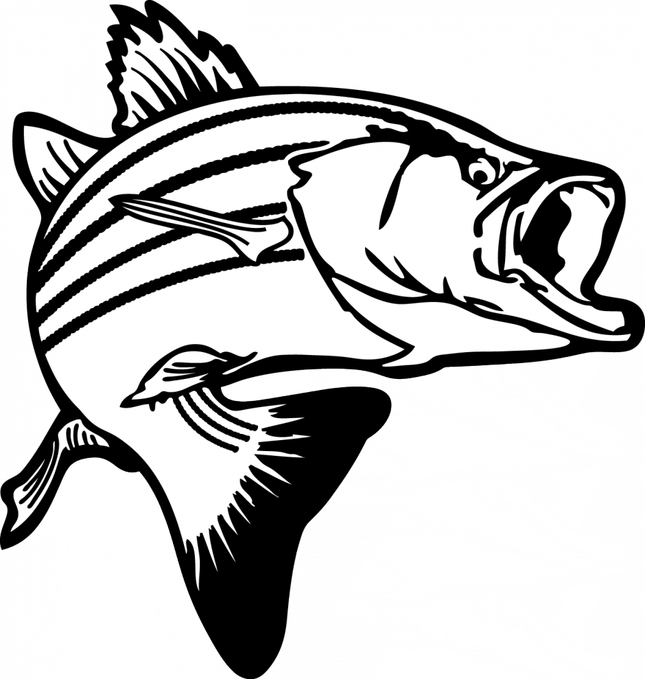 Seafood drawing vintage. Graphic royalty free