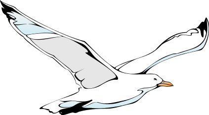 Transparent . Seagull clipart vector library download