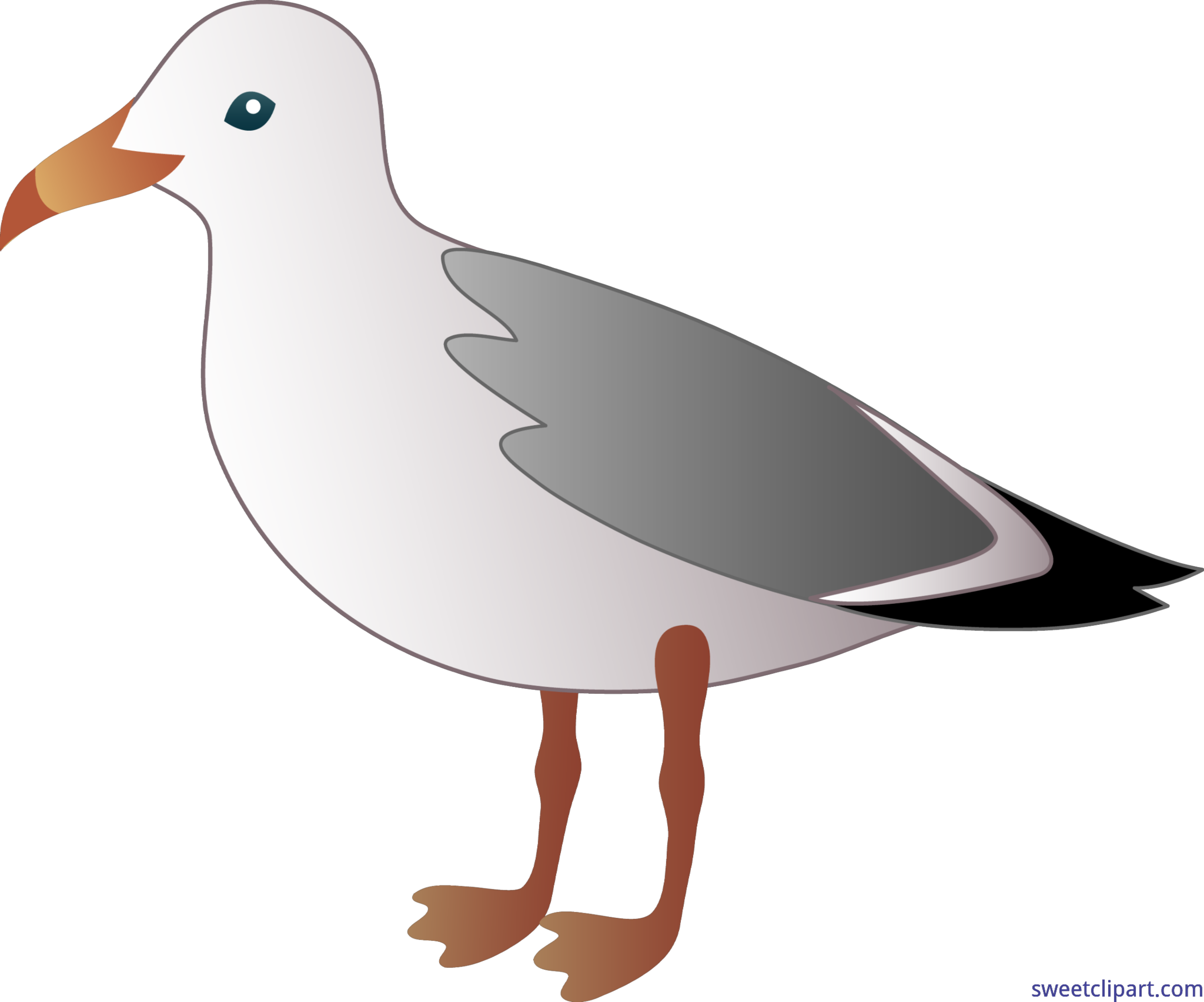 Clip art sweet. Seagull clipart clip transparent