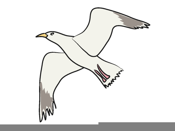 Flying free images at. Seagull clipart jpg black and white library