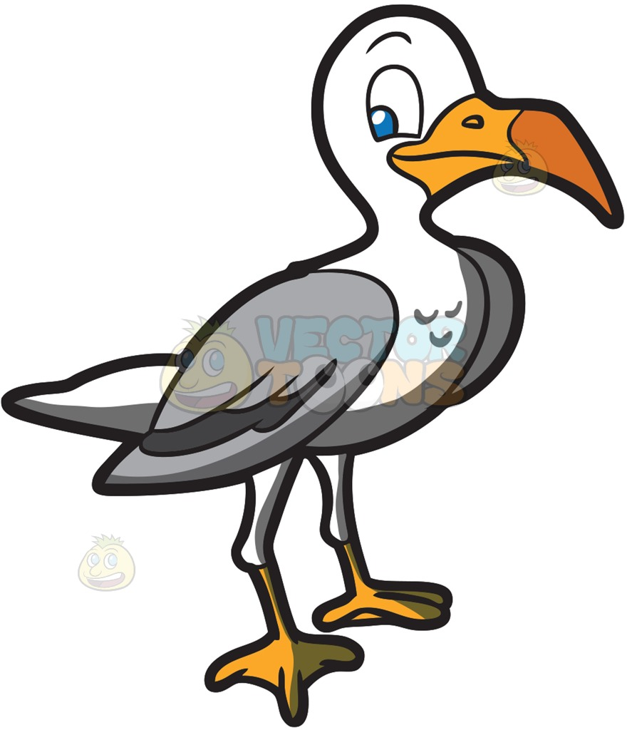 A cartoon vector toons. Seagull clipart clip black and white library