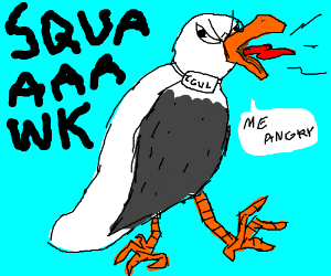 Seagull clipart angry seagull. Drawing by drengath
