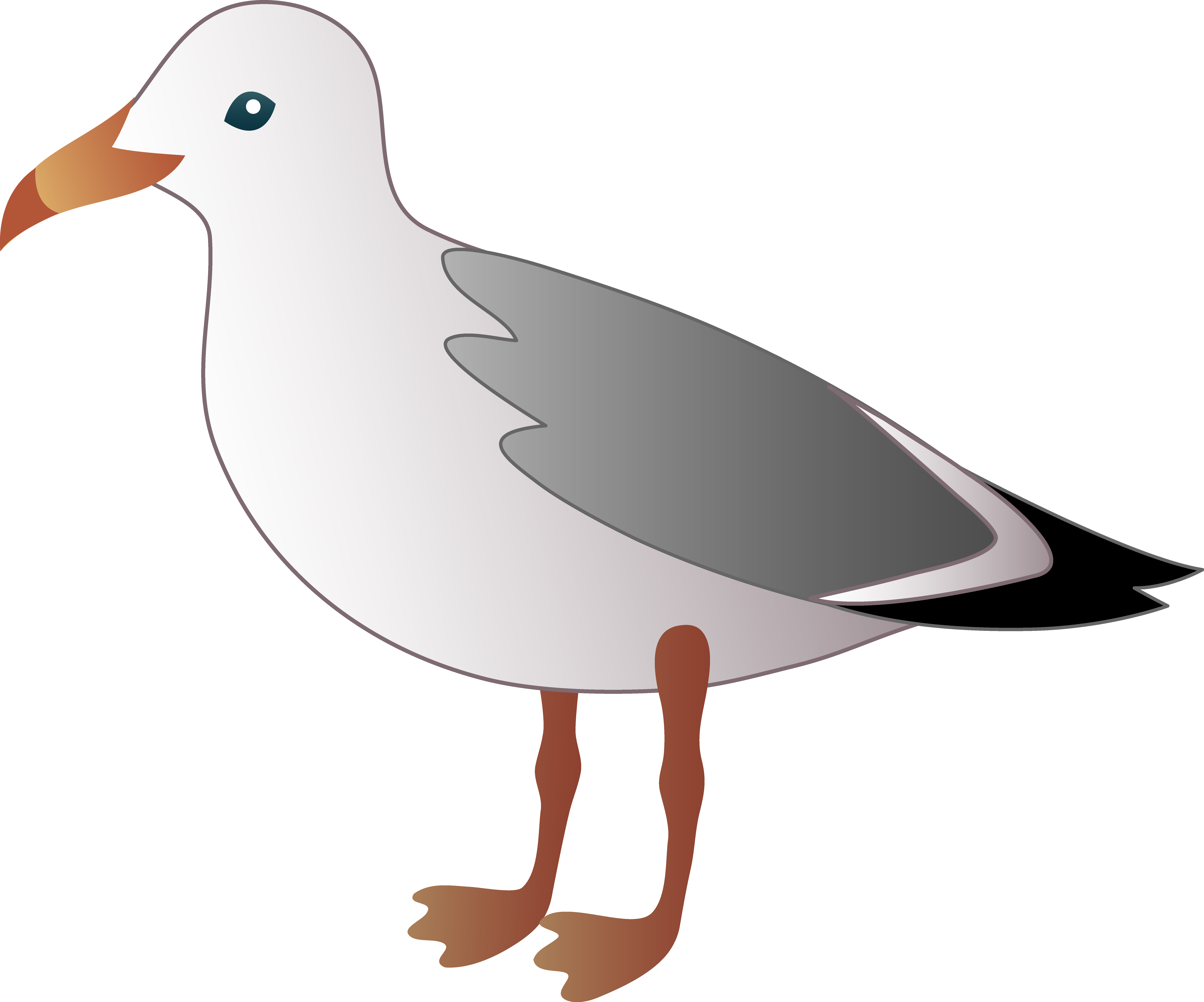 Little free clip art. Seagull clipart png royalty free stock