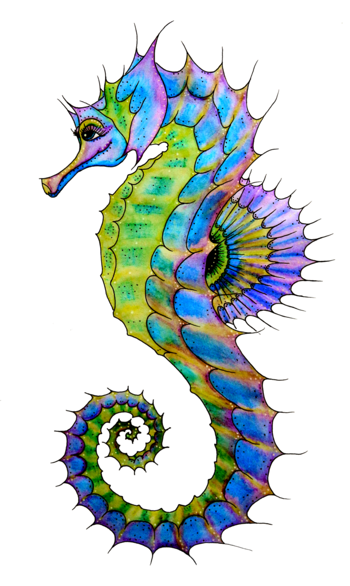 Seahorse clipart colourful. Starfish painting panda free