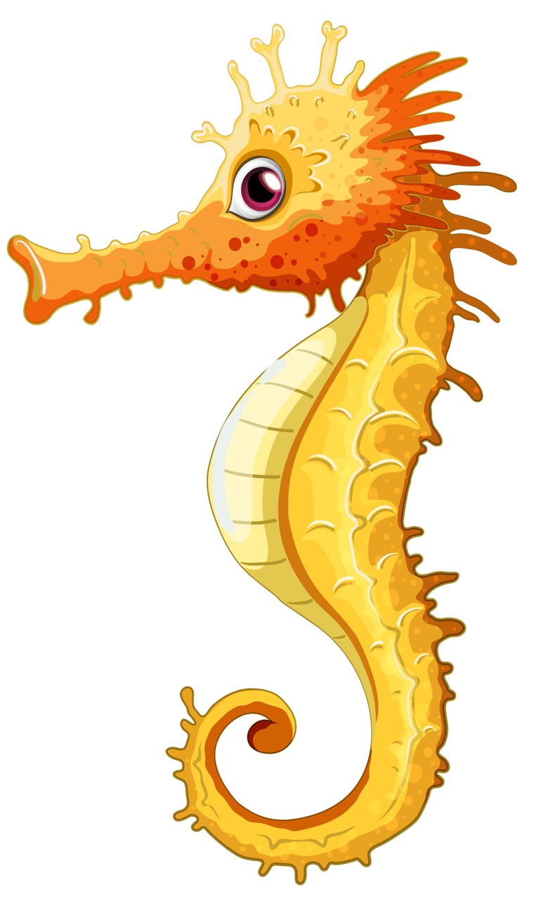 Seahorse clipart yellow seahorse. Png c pinterest