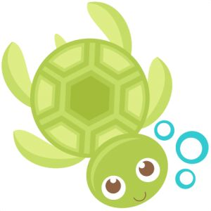 Seahorse clipart sea turtle. Best turtles images