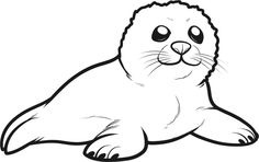 Seal clipart seal arctic. Drawing animal silhouettes vectors