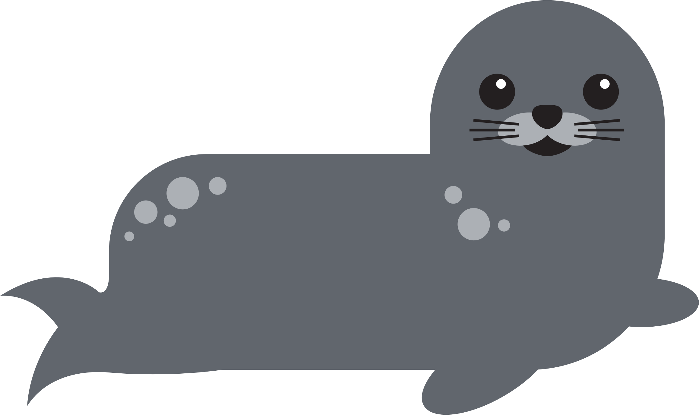Harbor seal png. Icons free and downloads